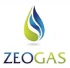 zeogas.com